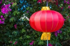Chinese lantern. On flower background Royalty Free Stock Photo