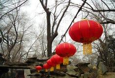 Chinese lantern Royalty Free Stock Photo