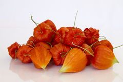 Chinese Lantern Seeds Stock Photos