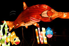 Chinese  lantern Show Royalty Free Stock Photography