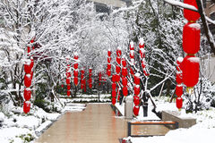 Chinese lantern. In Spring Festival, every family all China hang red lanterns。Hang up the red lantern in snow, sees next year atmosphere stock photography
