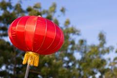 Chinese lantern. On tree background Stock Images