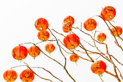 Chinese lantern on a white background Stock Images