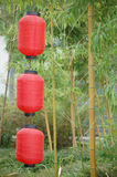 Chinese lanterns and bamboo. Three red Chinese lanterns outside with bamboo Stock Image