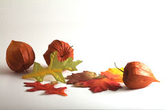 Chinese lanterns and fabric leaves Royalty Free Stock Photos