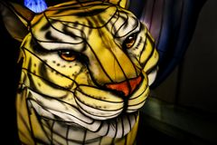 Chinese Lantern: Big Cat royalty free stock photography