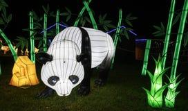 Chinese Lantern: Giant Panda stock photography