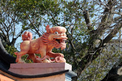Chinese leeuw Stock Fotografie