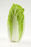 Chinese lettuce studio shot Stock Image