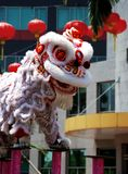 Chinese lion dance. Chinese new year lion dance Royalty Free Stock Image