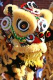 Chinese Lion Dance. To awaken a dragon Stock Images