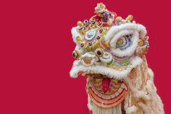 Chinese Lion Dance Costume. For new year Stock Images