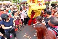 Chinese Lion Dance in Singapur Stockbilder