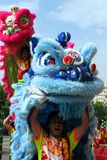 Chinese Lion Dancers in the city of Kaohsiung Royalty Free Stock Photography