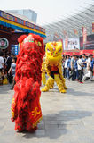 Chinese lion dancing Royalty Free Stock Image