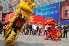 Chinese lion dancing Royalty Free Stock Photos