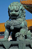 Chinese lion. At forbidden city stock photography
