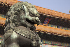 Chinese Lion in Forbidden Stock Photo