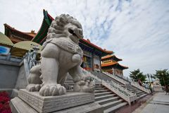 Chinese lion front of baromraja temple thailand Royalty Free Stock Photography