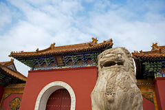 Chinese lion and gate Royalty Free Stock Photography