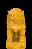 The Chinese lion isolated on black background Stock Image