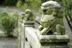 Chinese lion sculptures Royalty Free Stock Photo