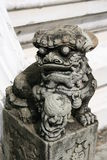 Chinese lion statue. Male lion guard holding a ball in China Temple Royalty Free Stock Photo
