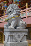 Chinese lion statue, also called the guardian lion Stock Images