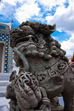 A chinese lion statue Stock Image