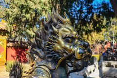 Chinese Lion Statue in Forbidden Palace at beijing royalty free stock photos