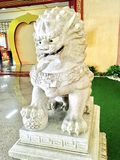 Chinese Lion Statue in Front of The Shrine Royalty Free Stock Image