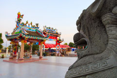 Chinese lion statue Stock Image
