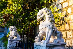 Chinese lion statue. Male lion guard holding a ball under golden sunshine in China Stock Photo