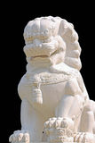 Chinese lion statue. The marble chinese lion statue on black background Stock Images