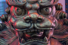 Chinese lion statue. The muzzle close-up in the light of the city at night. Stock Images