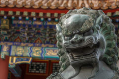 Chinese Lion Statue. Summer Palace Copper Lion Statue in Beijing China Stock Photo