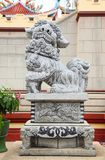 Chinese Lion stone statue in china temple in Thail Stock Image