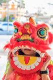 Chinese lion Royalty Free Stock Images