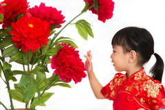 Chinese little girl wearing in Red posing with flowers Stock Image