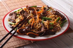 Chinese lo mein with beef, muer and vegetables close-up. Horizon. Chinese lo mein with beef, muer and vegetables close-up on a plate. Horizontal royalty free stock photos