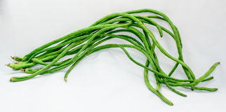 Chinese Long Beans on White Background. Raw Chinese Long Beans on a White Background Stock Image