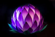 Chinese Lotus Lantern for Mid Autumn Festival Stock Images