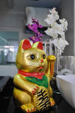 Chinese lucky cat. Golden color Stock Photography