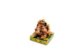 Chinese lucky lion Royalty Free Stock Image