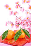 Chinese lunar new year decoration royalty free stock photos