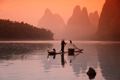 Chinese man fishing with cormorants birds. Yangshuo, Guangxi region, traditional fishing use trained cormorants to fish