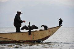 Chinese man fishing with cormorants birds Stock Photography
