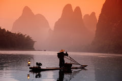 Chinese man fishing with cormorants birds, Yangshuo, Guangxi reg Stock Image