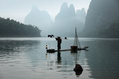 Chinese man fishing with cormorants birds Royalty Free Stock Images