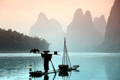 Chinese man fishing with cormorants birds Royalty Free Stock Photos